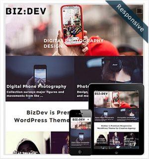 Dessign BizDev Responsive WordPress Theme 2.0.1