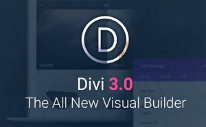 Divi WordPress Theme 4.9.1