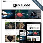 ProBlogThemeRes