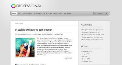 Elegant Themes TheProfessional WordPress Theme 4.0.13