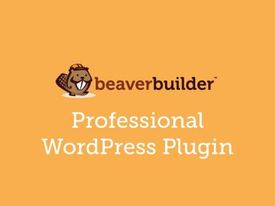 Beaver Builder Professional WordPress Plugin 2.4.2.2