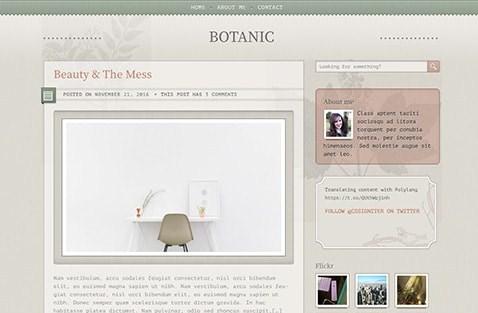 CSS Igniter Botanic WordPress Theme 1.6