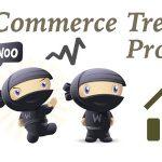 codecanyon-12695424-woocommerce-trending-products-wordpress-plugin