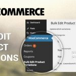 codecanyon-6822726-woocommerce-bulk-edit-variable-products-prices-wordpress-plugin