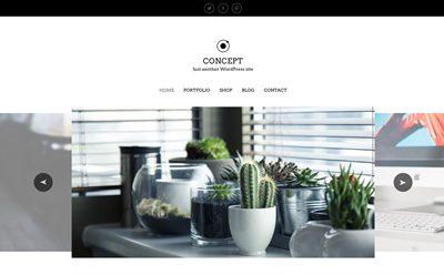 Viva Themes Concept WordPress Theme 1.2.0