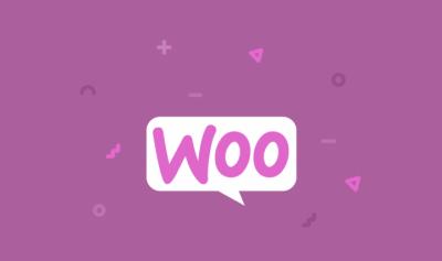 WP ERP Woocommerce Integration 1.3.1