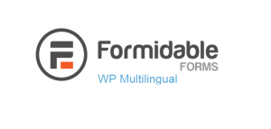 Formidable Forms - WP Multilingual 1.07