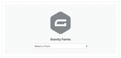 Gravity Forms Gutenberg Add-On -rc- 1.0-rc-1.2