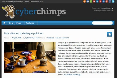 CyberChimps iFeature Pro 5 WordPress Theme 6.15