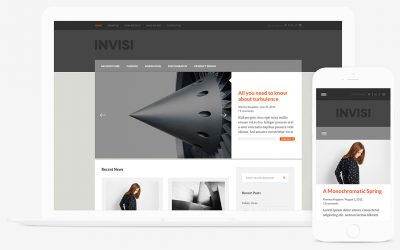 Themes Kingdom Invisi WordPress Theme 2.1.3