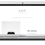 lily_theme_package