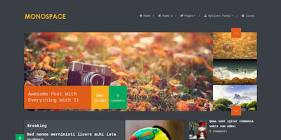 MyThemeShop Monospace WordPress Theme 1.1.10