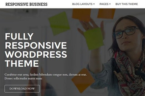 CyberChimps Responsive Business WordPress Theme 1.0