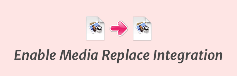 SearchWP Enable Media Replace 1.1.1