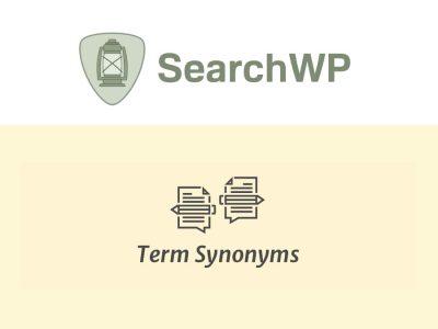 SearchWP Term Synonyms 2.4.14