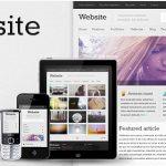 themeforest-1739143-website-responsive-wordpress-theme-wordpress-theme