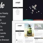 themeforest-4599565-example-responsive-retina-portfolio-wp-theme-wordpress-theme