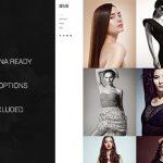 themeforest-4740718-skylab-portfolio-photography-wordpress-theme-wordpress-theme
