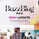 themeforest-7424768-buzzblog-clean-personal-wordpress-blog-theme