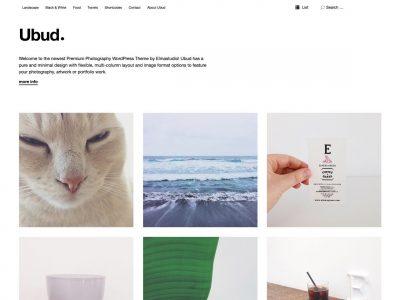 Elmastudio Ubud WordPress Theme 1.0.7