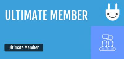 Ultimate Member Groups Addon 2.2.6