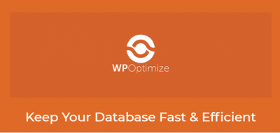 WP-Optimize Premium 3.1.8